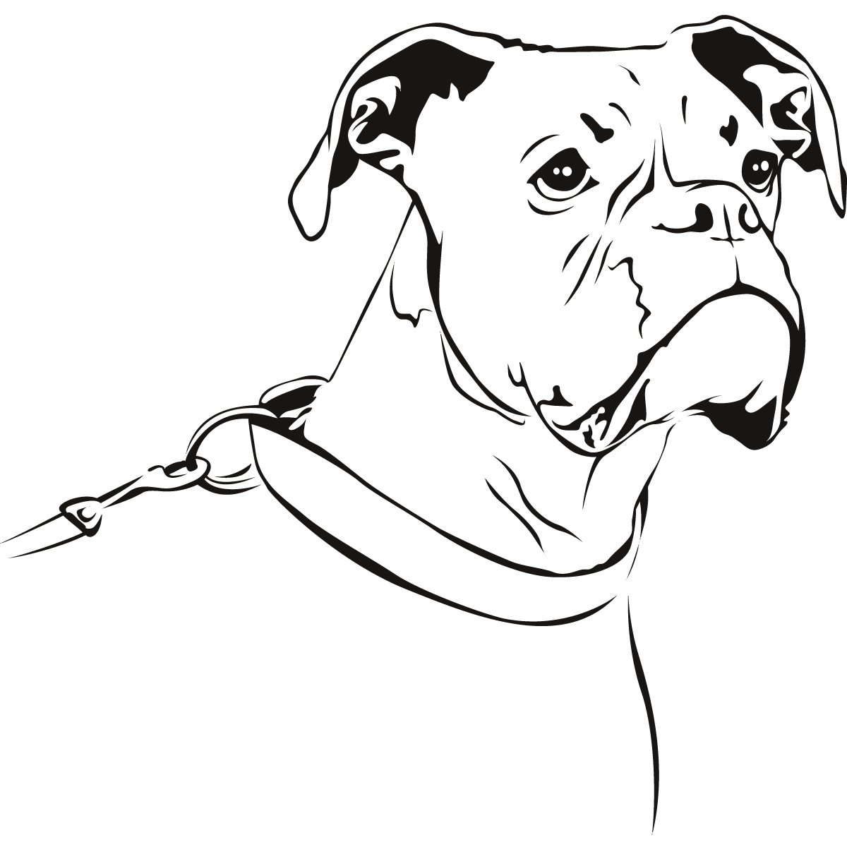 Line Drawing Of A Dog S Face : Free drawing boxer coloring pages
