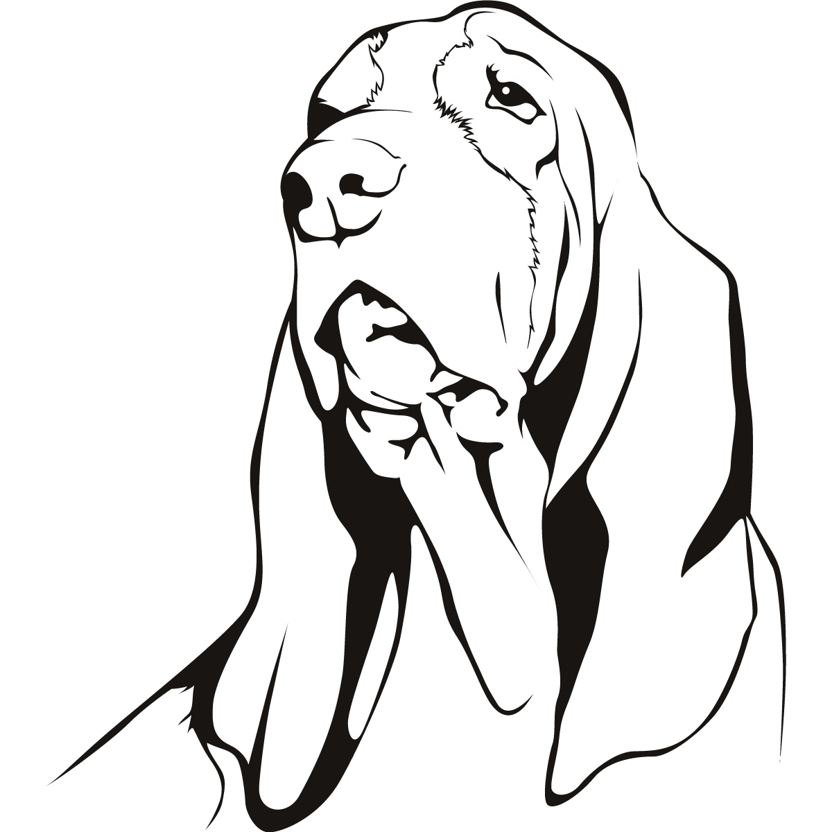 dog basset coloring pages - photo#10